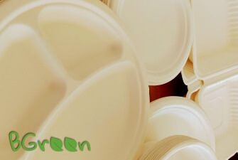 naczynia biodegradowalne bgreen
